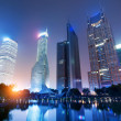 Night view of shanghai — Stock Photo #17867573