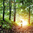 Woman walking in the woods — Stock Photo