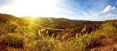 Solnedgång när bergen — Stockfoto