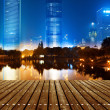 Night view of shanghai — Stock Photo #18063683
