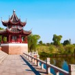 Chinese ancient buildings — Stock Photo #18064279