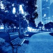 The park at night — Stock Photo