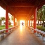 Suzhou gardens — Stock Photo