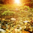 Stream early morning sunrise — Stockfoto