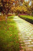 Fall, China's urban trail. — Stock Photo