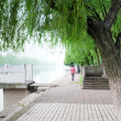 Stock Photo: Small river park