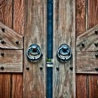 Very old door — Stock Photo