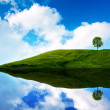 Stock Photo: Blue sky green water in lawn