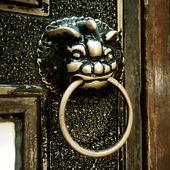 Gate lion decoration — Stock Photo