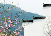Very beautiful Chinese village scene — Photo