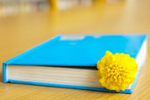 Books and chrysanthemum — Stock Photo
