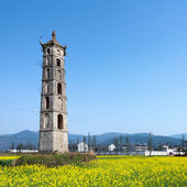 Pagodas and canola flower — Stock Photo