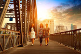 Old iron bridge — Stock Photo