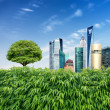 Greenery surrounded by skyscrapers — Stock Photo