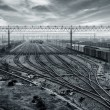 Railway transport hub — Stock Photo #26580447