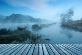 The morning of the lake — Stock Photo