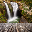 Waterfall — Stock Photo #44001807