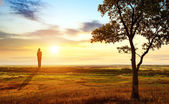 Prairie sunset — Stockfoto