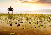 China Hangzhou West Lake Landscape — Stock Photo