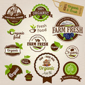 Set of Fresh Organic Labels and Elements — Vettoriale Stock