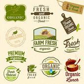 Ensemble d'étiquettes organiques fraîches et éléments — Vecteur