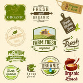 Set of Fresh Organic Labels and Elements — Stok Vektör
