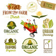 Organic & Farm Fresh — Stock Vector #30099179