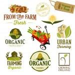 Organic & Farm Fresh — Stock Vector