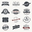 Set of  vector stickers and ribbons - retro style — Vettoriali Stock
