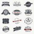Set of  vector stickers and ribbons - retro style — Imagen vectorial