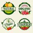 Set of Fresh & Organic labels — Stock Vector