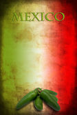 Mexican flag with jalapeno — Foto Stock