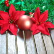 Christmas decorations — Stock Photo #14669089