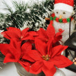 Stock Photo: Seasonal background with Christmas decorations