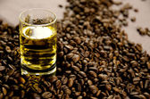 Whisky and coffee beans — Stock Photo