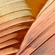 Stock Photo: The Wave, Sandstone Curve, Arizona