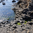 Giant's Causeway, County Antrim, Northern Ireland — Stock Photo #13370036
