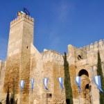 Seville gate alcazar, Carmona, Seville (Spain) — Stock Photo