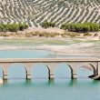 Bridge over Iznajar reservoir, Cordoba (Spain) - Stock Photo