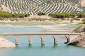 Bridge over Iznajar reservoir, Cordoba (Spain) — Stok fotoğraf