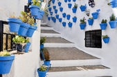 Flowerpots in an Andalusian town — Stock Photo