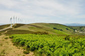 Elguea range, Basque Country (Spain) — Zdjęcie stockowe