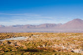 The Andes range, between Chile and Bolivia — Stock Photo