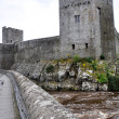 Cahir castle in county Tipperary, Ireland - Stock Photo