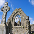 Athenry Dominican Friary, Ireland — Stock Photo #15644997