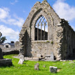 Athenry Dominican Friary, Ireland — Stock Photo