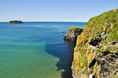 Cliffs of Carrick A Rede in Northern Ireland — Stock Photo