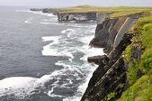 Loop head cliffs, Ireland — Stock Photo