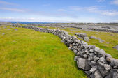 Irish Landscape, Inishmore, Aran islands in Ireland — Stock Photo