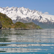Aialik bay, Kenai Fjords NP, Alaska — Stock Photo #17681031